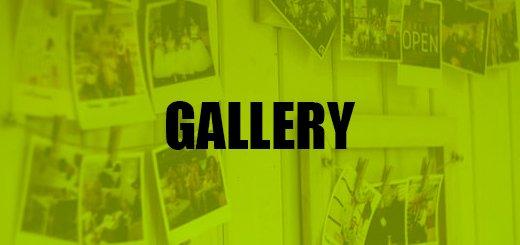 Thumpstar gallery